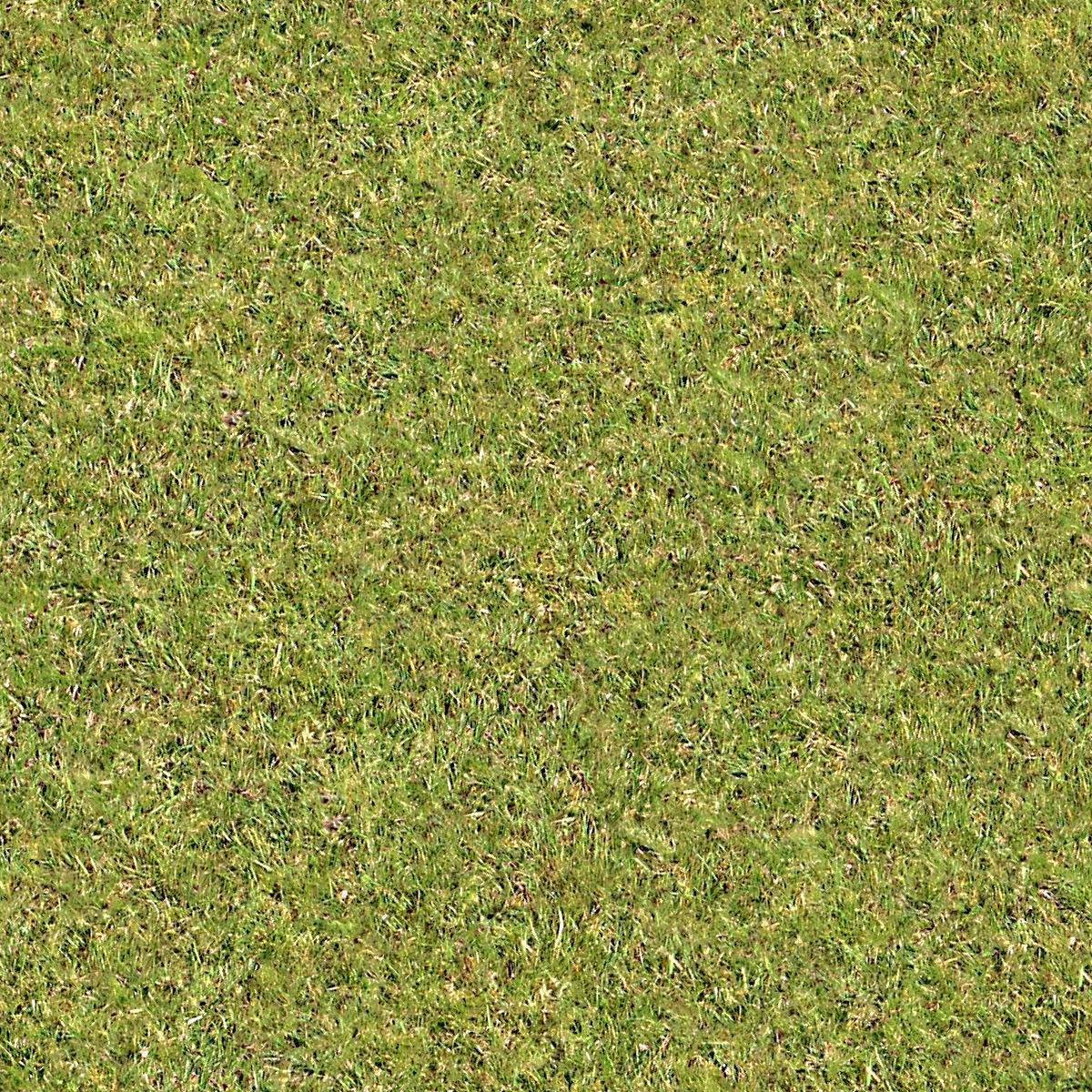 Index of /Artlantis 3ds/ Artlantis R Models& Textures/ALT003_Lawns